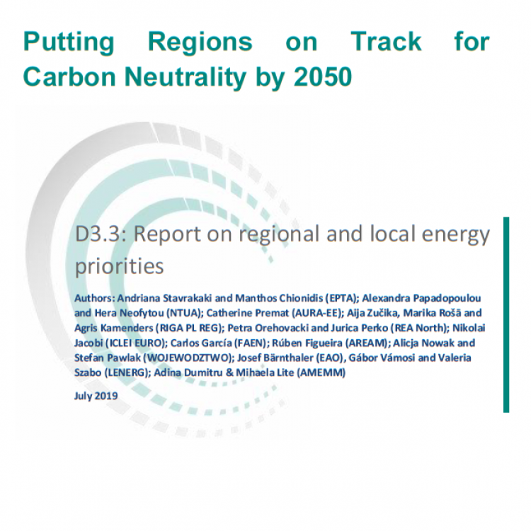 Report on Local and Regional Priorities in 11 EU Countries